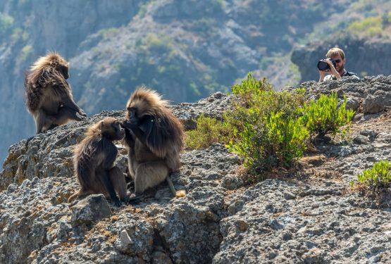 Äthiopien Reisen - Fotoreise