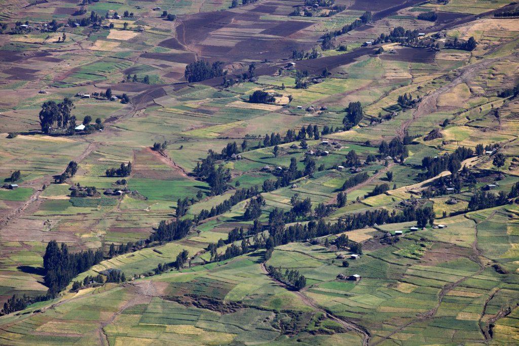 Äthiopien Rundreise - Felder