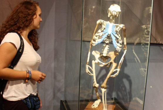 Äthiopien Reise - Lucy im Nationalmuseum Addis Abeba