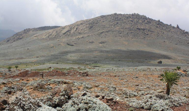 Senate Plateau